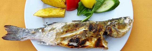 prix-du-poisson-alimentation