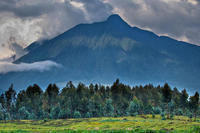 Total s'engage à ne pas toucher au Parc des Virunga