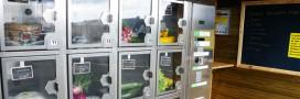 Fruits et légumes bio et local en distributeur automatique