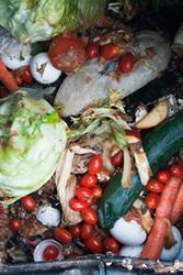 gaspillage-alimentaire-belgique-3