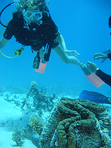grande-barriere-de-corail-australie-02