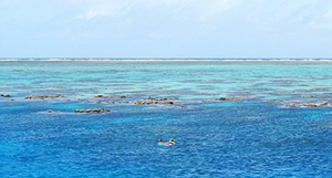 grande-barriere-de-corail-australie-03
