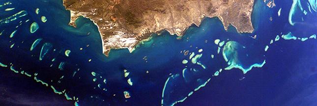L'Australie reconnaît la dégradation de la Grande Barrière de corail