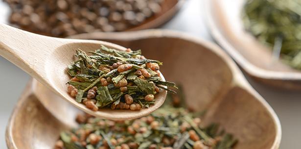 théier thé vert faire pousser chez soi plante d'intérieur