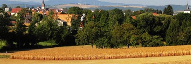 Production mondiale de blé: vers un plongeon?