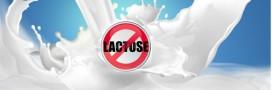 Intolérance ou allergie au lactose ?