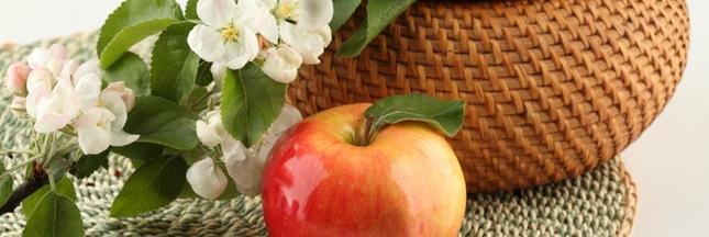 Le réchauffement climatique affecte aussi les pommes