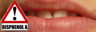 Le bisphénol A perturbe la formation des dents