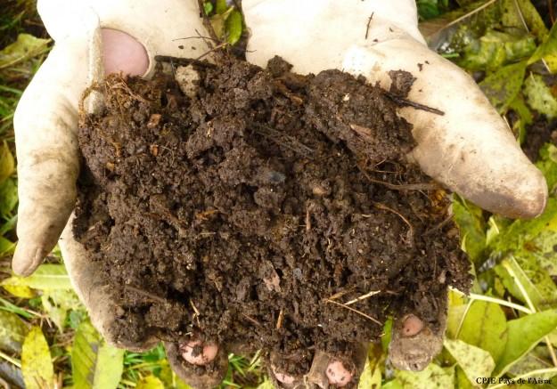 compost-mur3