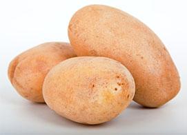 pommes-terre-frites