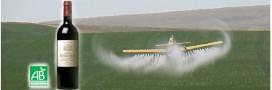 Vin bio et pesticides: sommes-nous protégés?