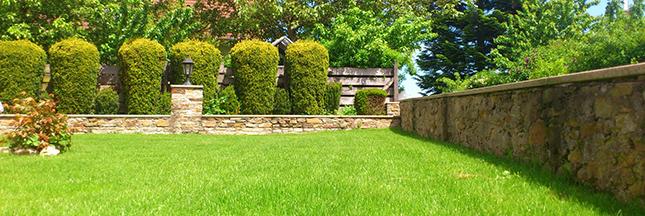 haies-nature-verdure-jardin-pelouse-ban