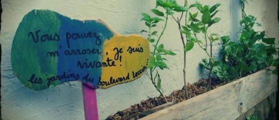 jardin-collectif-ville