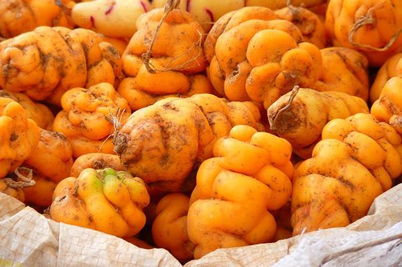 pommes-de-terre-perou-legumes