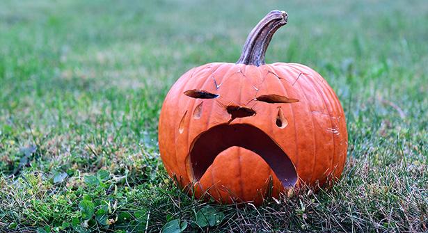 citrouille halloween choisir bio potiron courge