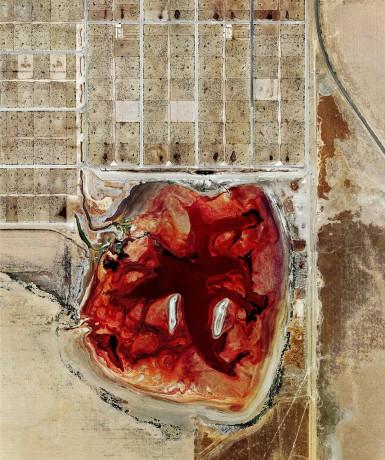 Coronado-Feeders-Dalhart-Texas-385x460