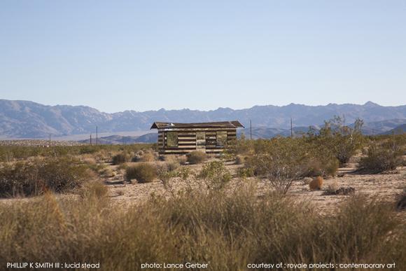 LucidStead_desert