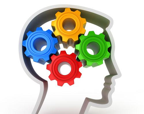 biais cognitif-cerveau