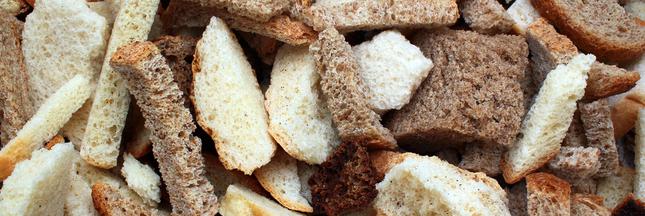 10 recettes anti-gaspi à faire avec du pain sec