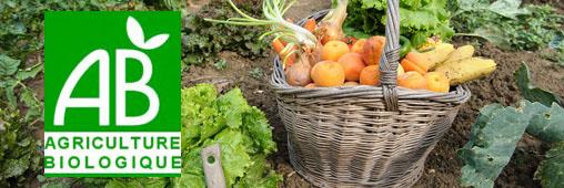 Manger bio et local : le bon équilibre ?