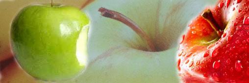Pourquoi les pommes sont de plus en plus farineuses ?