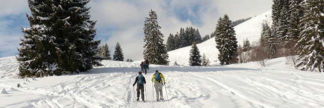 Stations de ski écologiques : le label Flocon vert