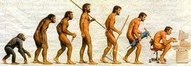 évolution vers le vouté