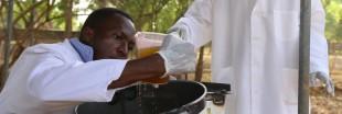 Faso Soap, le savon contre le paludisme