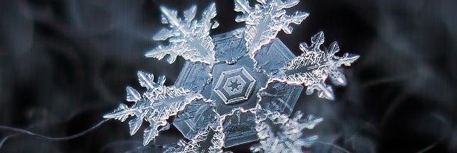 Les flocons de neige comme vous ne les avez jamais vus !