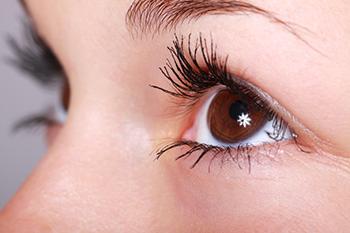 oeil-sourcil-beaute-01