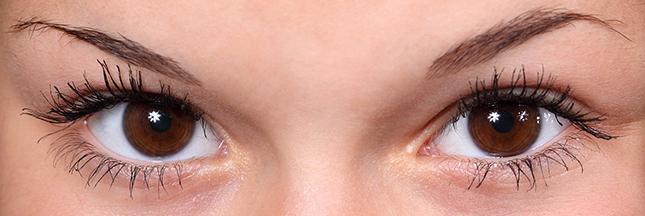 Beauté bio : comment bien dessiner ses sourcils