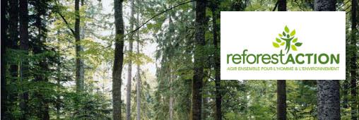 Interview : Reforest'action, des cadeaux pour reboiser