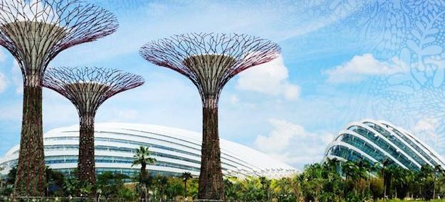 l 39 incroyable ecoparc de singapour est il un parc cologique page 2 of 3 page 2. Black Bedroom Furniture Sets. Home Design Ideas