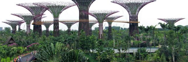 L'incroyable Ecoparc de Singapour est-il un parc écologique?