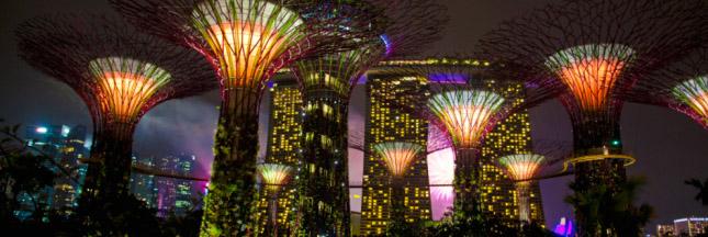 ecopark-singapour-nuit