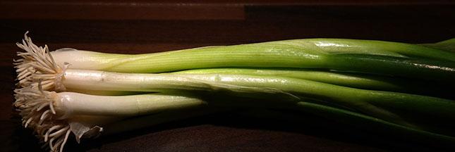 poireau-legume-alimentation-ban