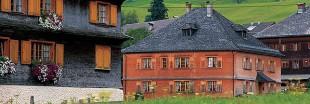 Ecologie, le comté de Vorarlberg fait feu de tout bois