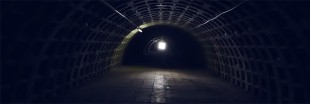 Le potager souterrain, le futur pour les légumes ?