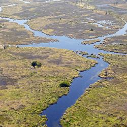 afrique-eau-delta-okavango-desert-botswana