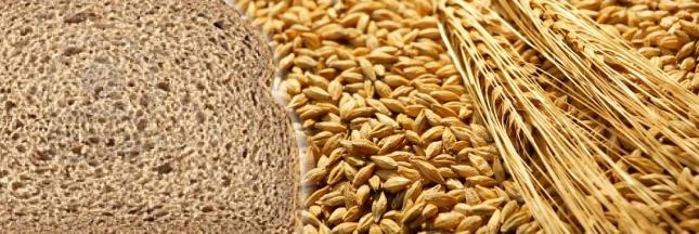 fibres-alimentaires-pain