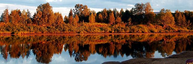 finlande-laponie-foret-arbres-lac-paysage-ban