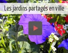 les jardins partagés en ville