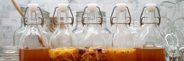 Le kombucha, boisson d'immortali-thé