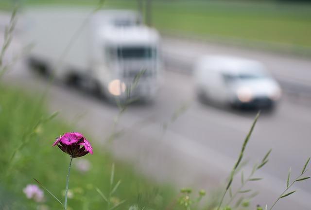 pollution-atmospherique-voitures-fleur-route-autoroute-trafic
