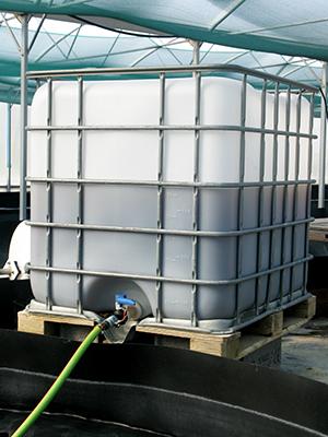culture-de-la-spiruline-france-bioreacteur