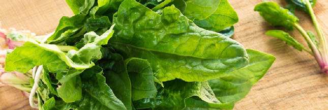 epinards-legume-vert-alimentation-ban
