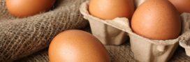 L'oeuf: trésor de nutriments bons pour la santé