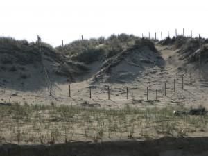 Erosion dunes aquitaines