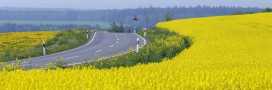 L'Europe va-t-elle carburer aux agrocarburants?