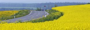 L'Europe va-t-elle carburer aux agrocarburants ?